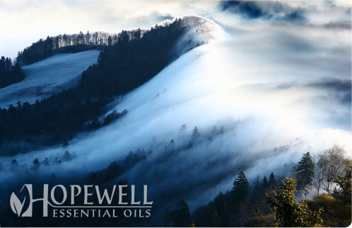 Hopewell Essential Oil Deepease Essential Oil Blend