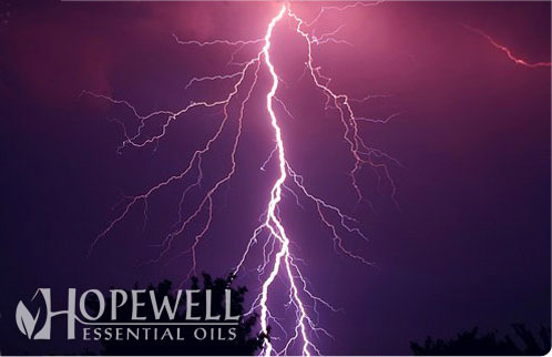 Hopewell Essential Oil - Strength Essential Oil Blend | Joints